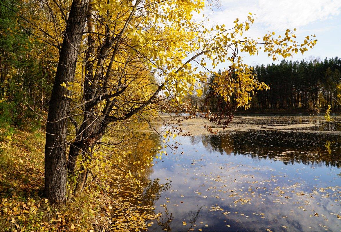 Осень - Наталия Григорьева
