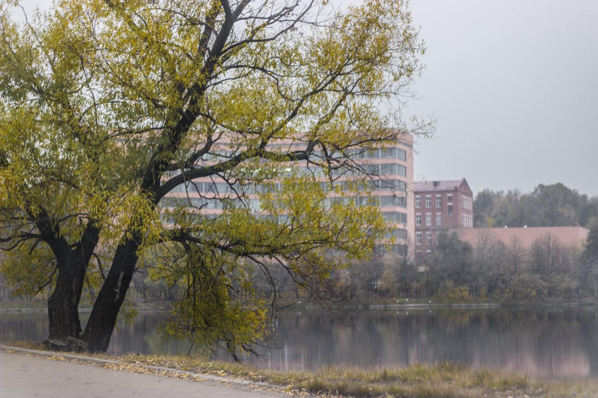 Осень в городе - Elena Ignatova
