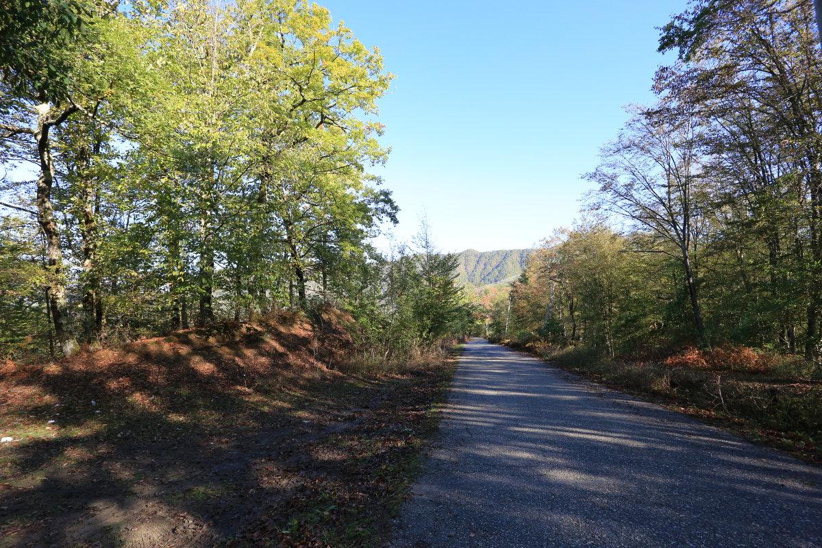 Дорога в горы - valeriy khlopunov