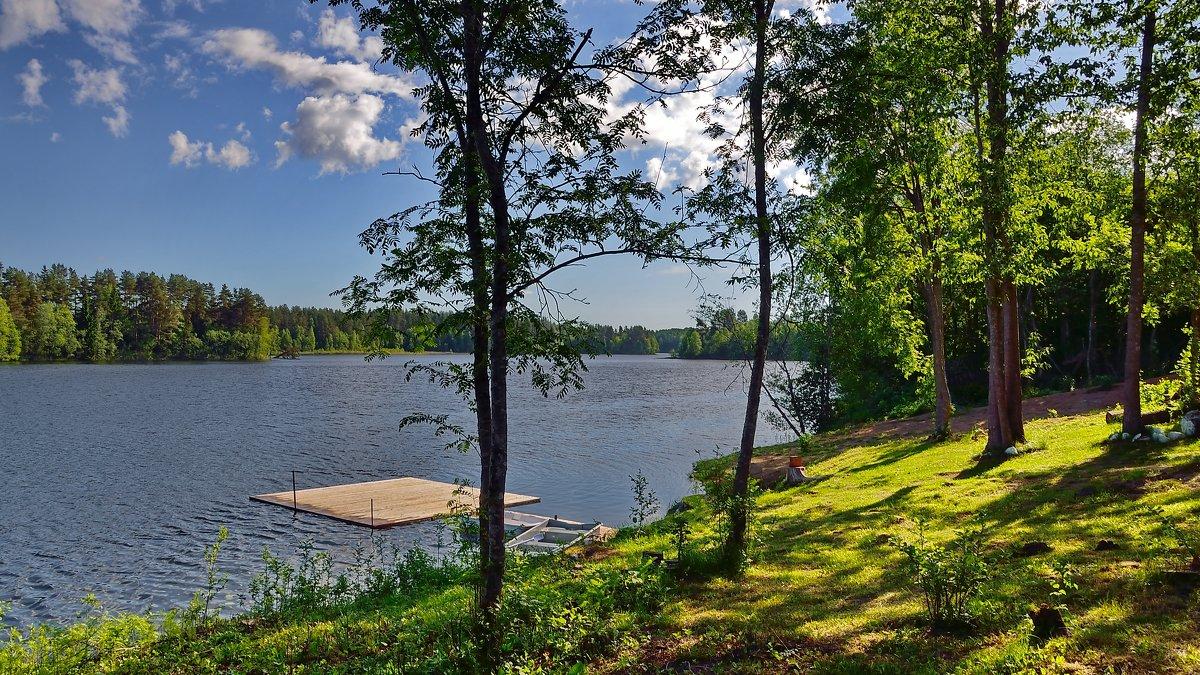 Солнечный денёк. (Валдай. Озеро Петрово) - kolin marsh