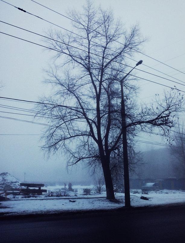 Туманный декабрь - Кристина Кеннетт