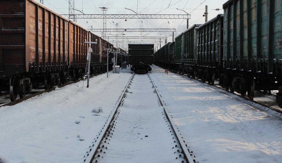 Техника - Дмитрий Арсеньев