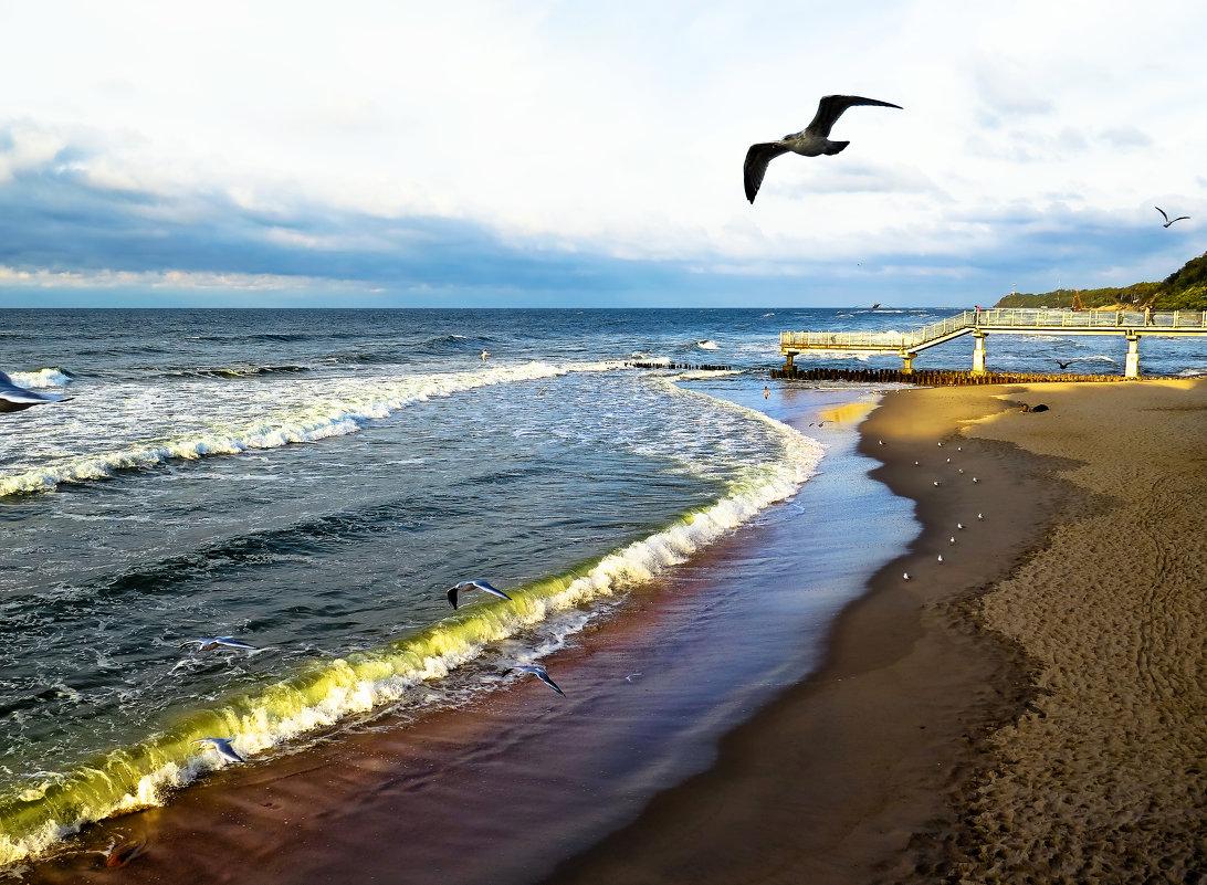 Балтика... - Александр Яковлев
