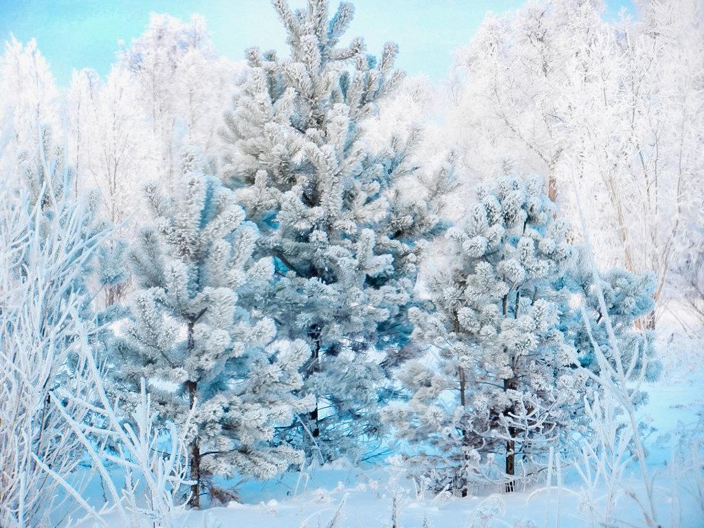 зимнее - Светлана