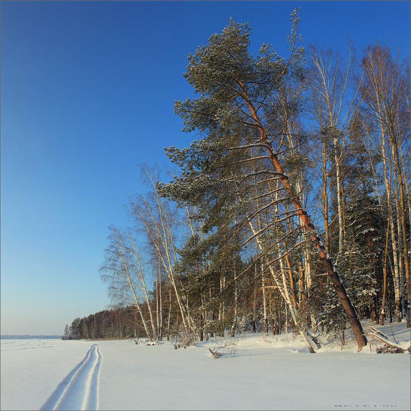 Зимний пейзаж №2 - Алексей Макшаков