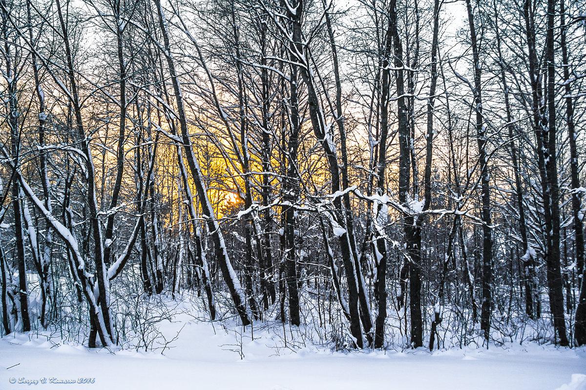 Неспешный зимний ритм - Сергей В. Комаров