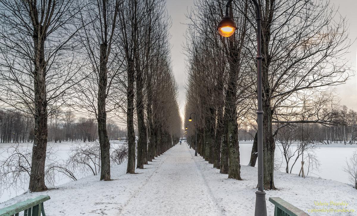 Утренняя аллея - Valeriy Piterskiy