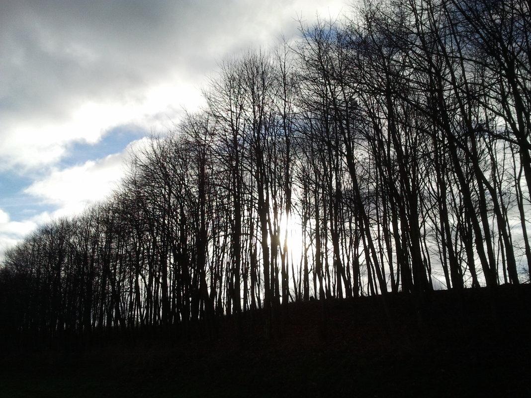 За холмом - Вини Пух