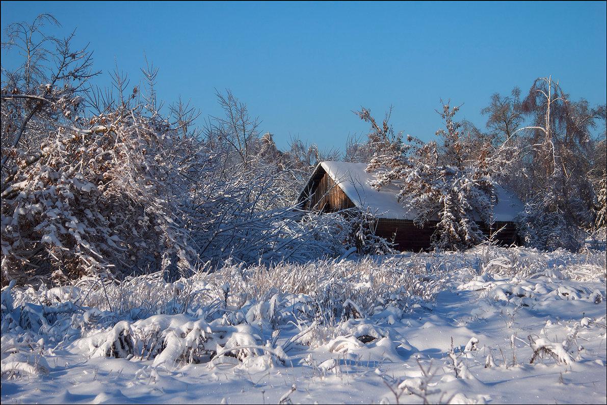 Зимний пейзаж - Елена Ерошевич