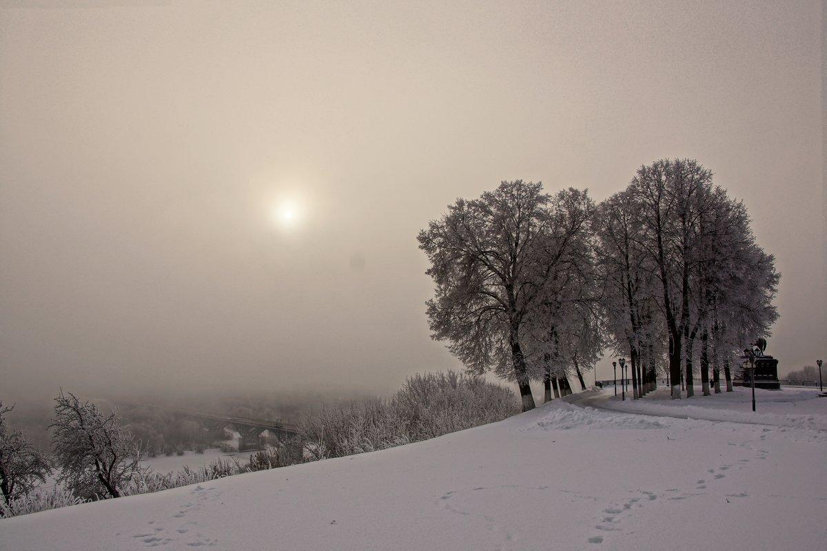 Зимний туман - Светлана