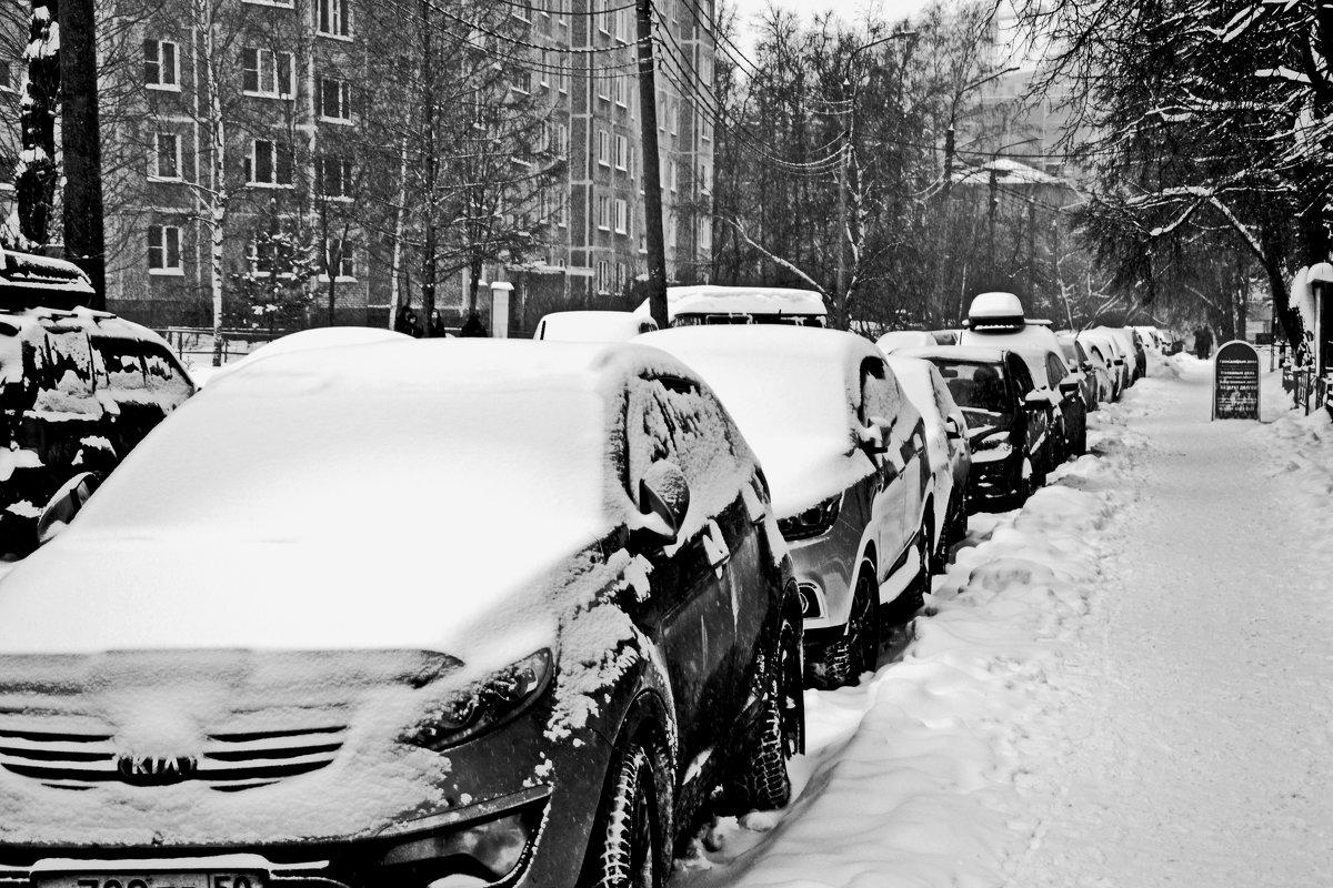 Зимние улицы - Сергей F