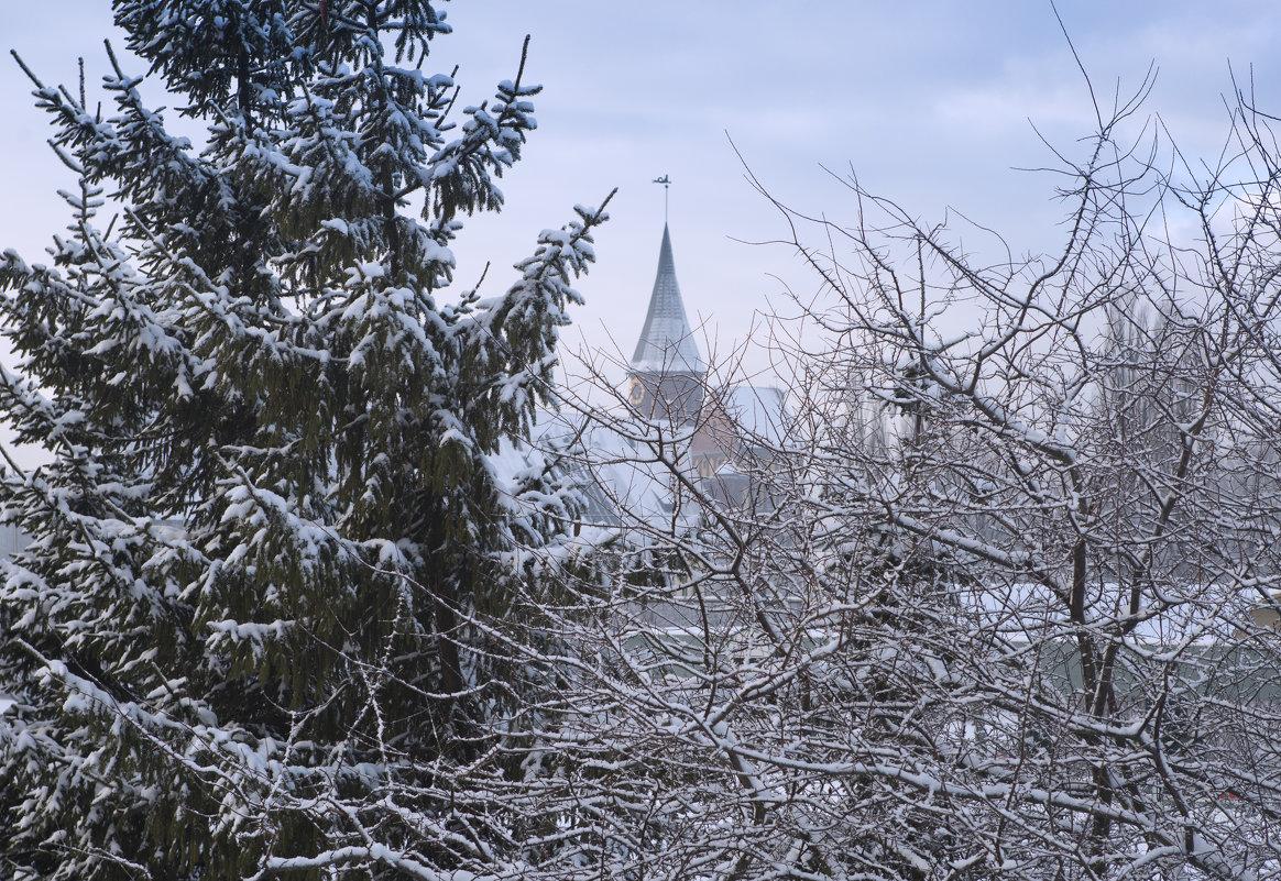 Зима по Калининградски. - Виталий Латышонок