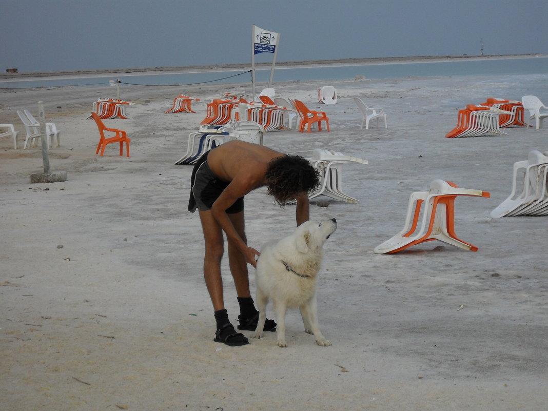 Охрана пляжа на Мёртвом море - Надежда