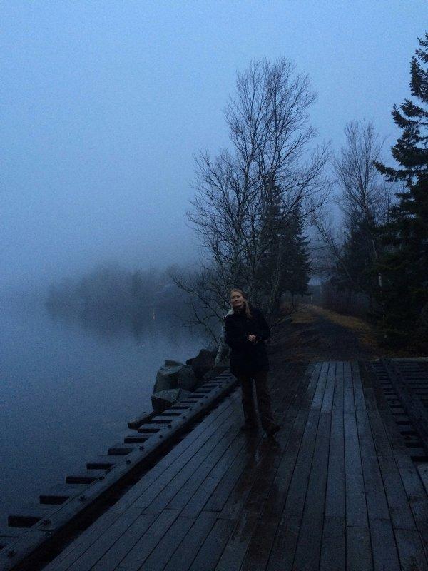 На туманном берегу залива Фанди в Канаде. - Одиноков Юрий