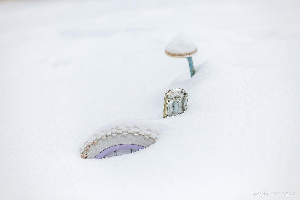 В ожидании весны - Petr Shostak