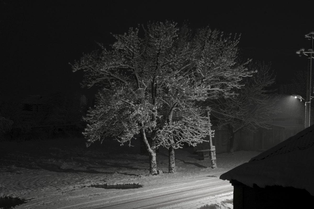 Ночь, улица, фонарь... - Петр Заровнев