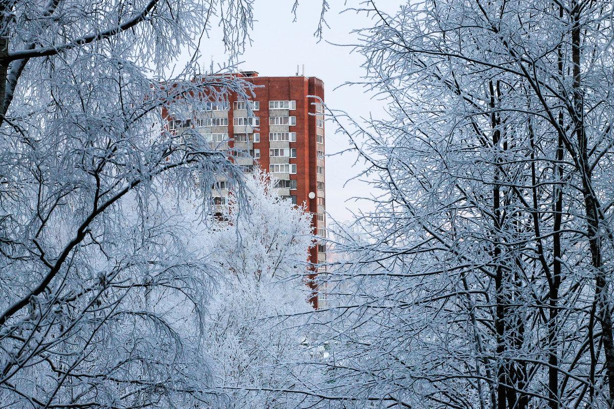 Зимнее утро - Александра К