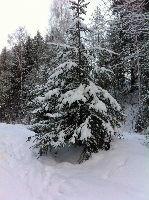 снежно... - helga 2015