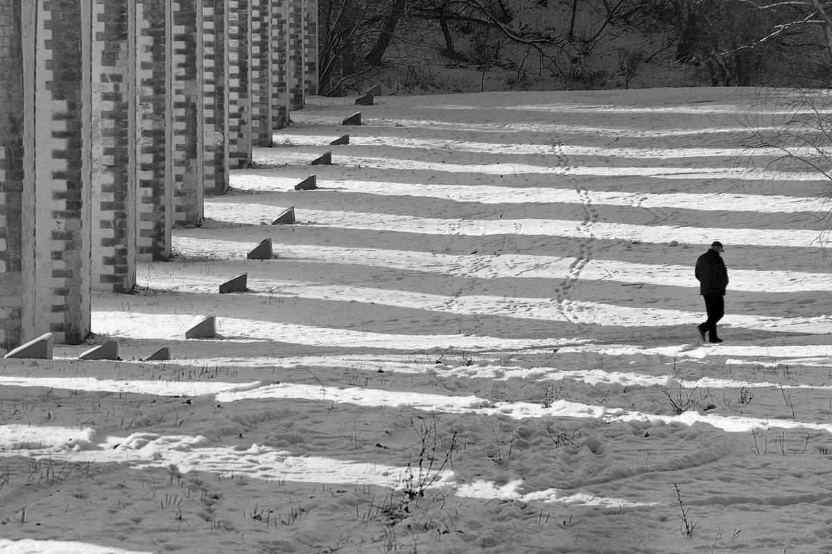 зима и солнце у акведука недалеко от ВДНХ - Максим Должанский