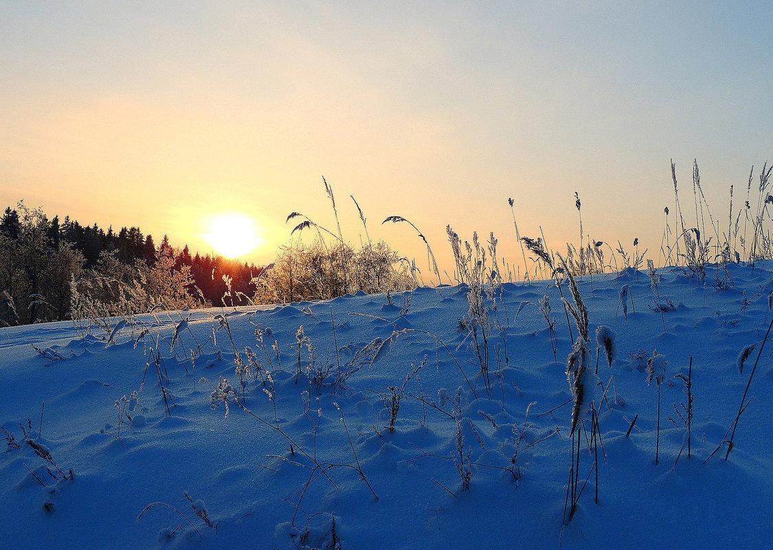 Солнце скрылось за горой - Павлова Татьяна Павлова