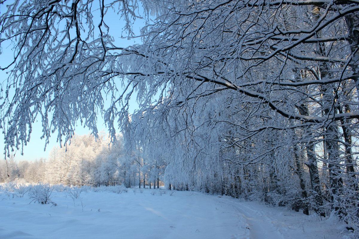 Вот она - Зима! - Наталья Лунева