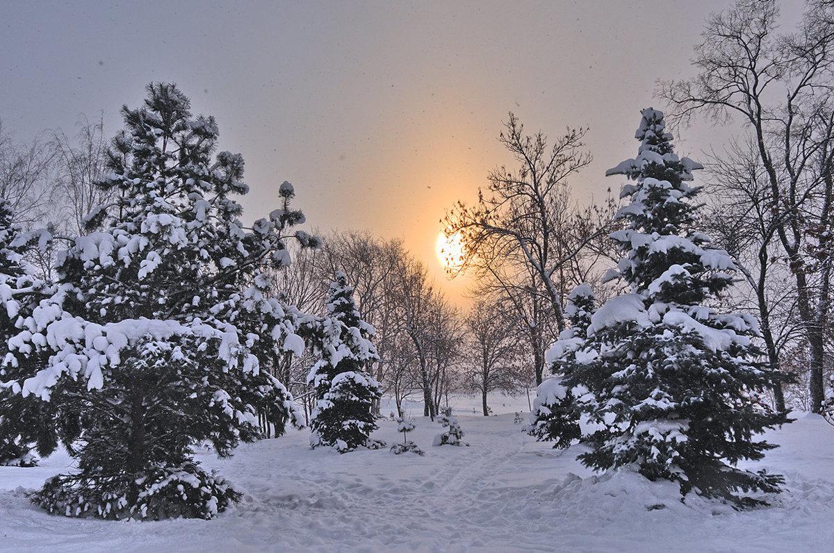 Снег и солнце - Николай Белавин