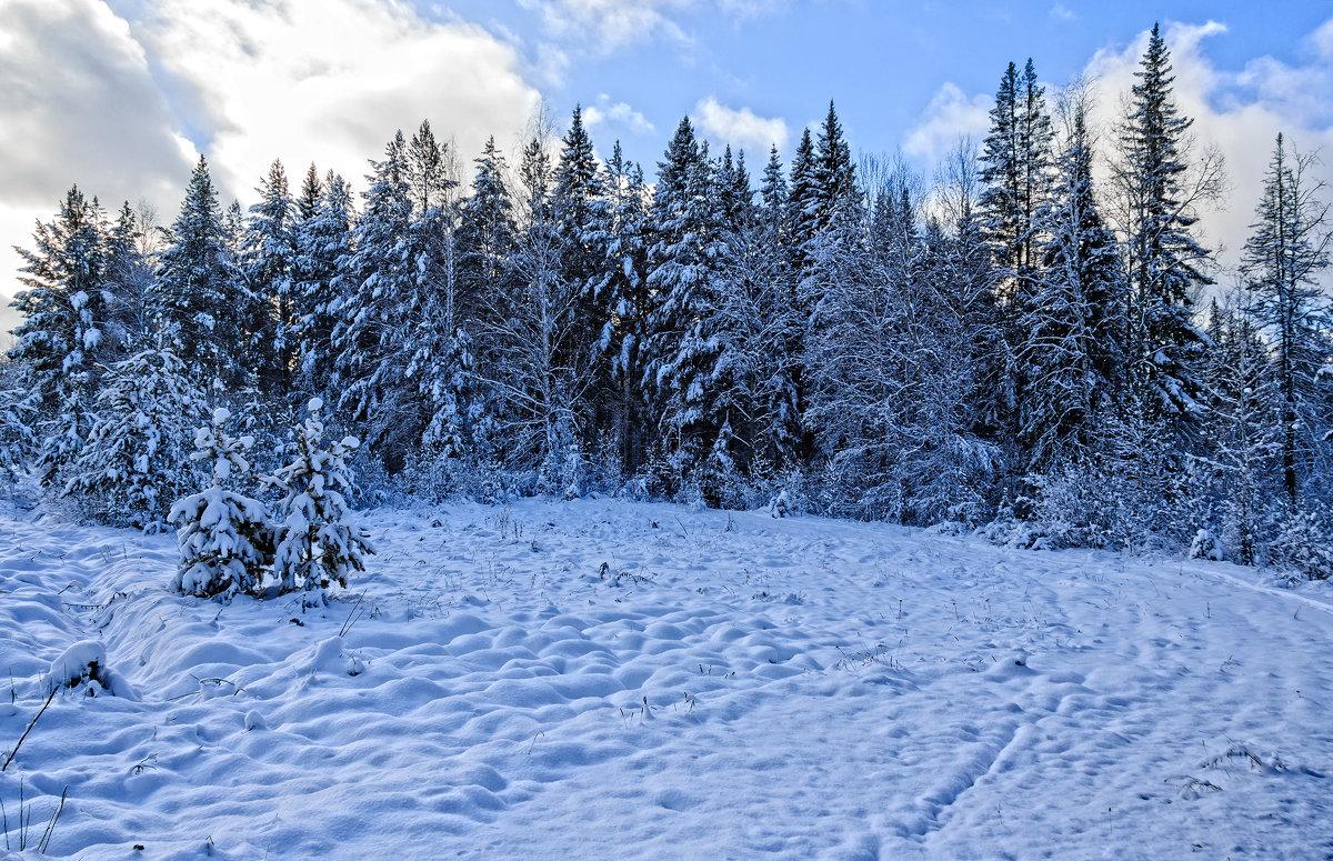 Первый снег - Александр Романов