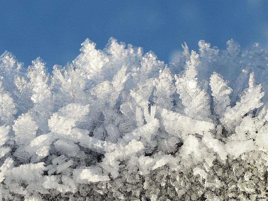 Ледяные фантазии - Swetlana V