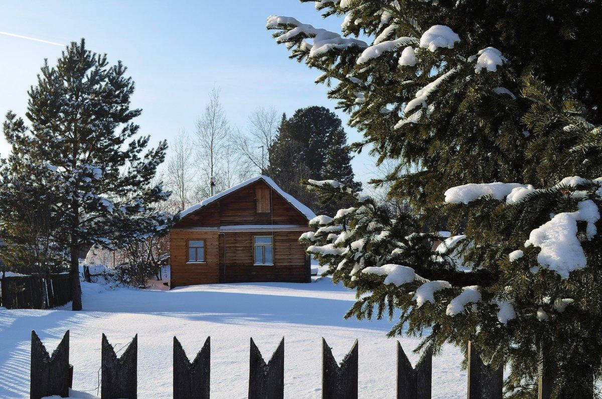 Зимние прогулки - Вера Андреева