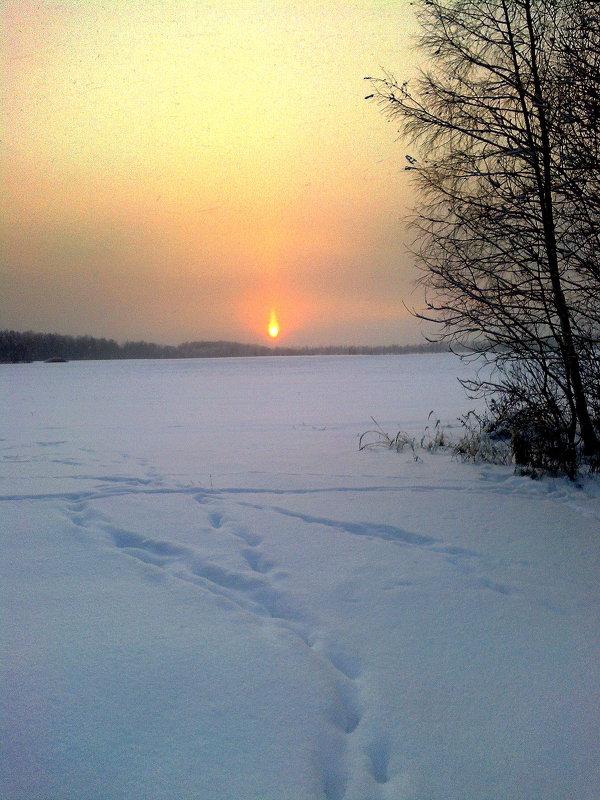 январь на закате - Леонид Виноградов