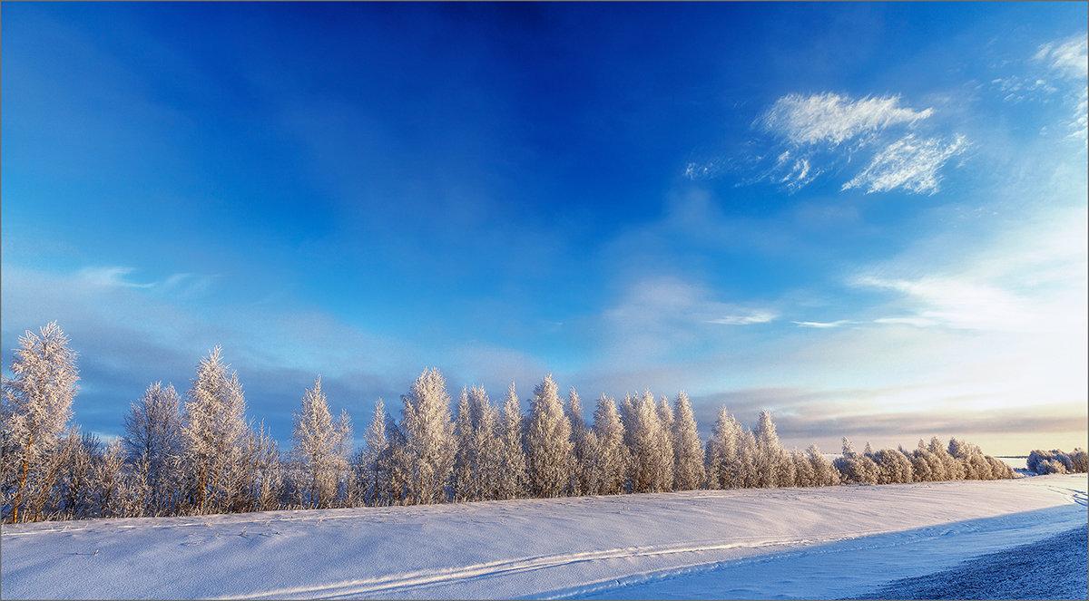 Картинка морозная... - Александр Никитинский