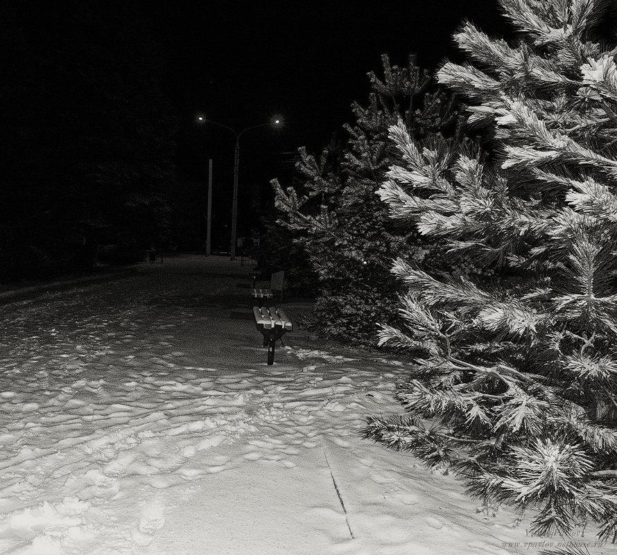 Ночной город - Виталий Павлов