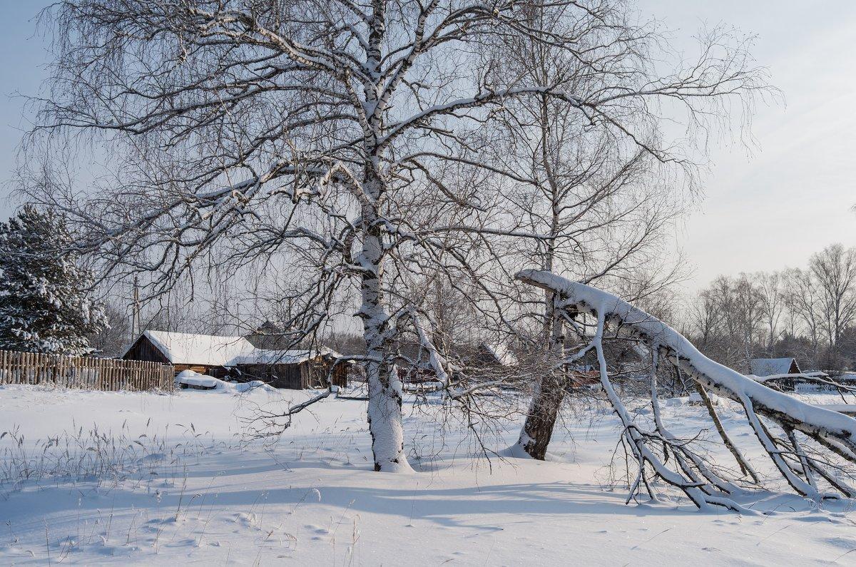 Деревенские мотивы - Андрей Зайцев