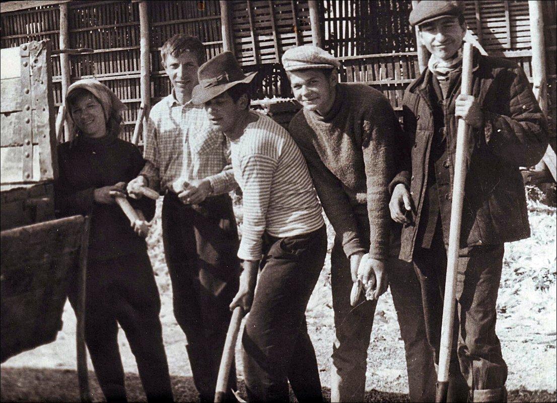 Студенты в колхозе. 1968 год - Нина Корешкова