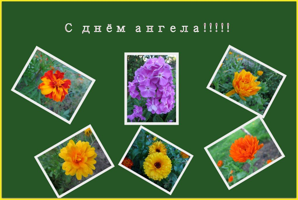 С днём Татьяны! - Валентина Жукова