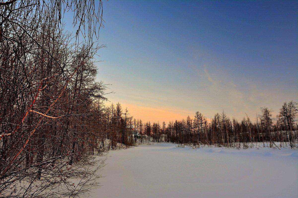 Прогулка по зимнему лесу - Витас Бенета