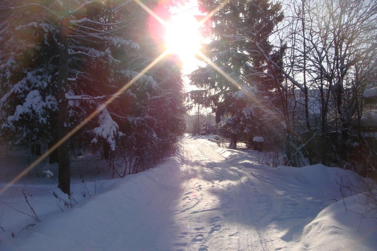Зима. - Antonina