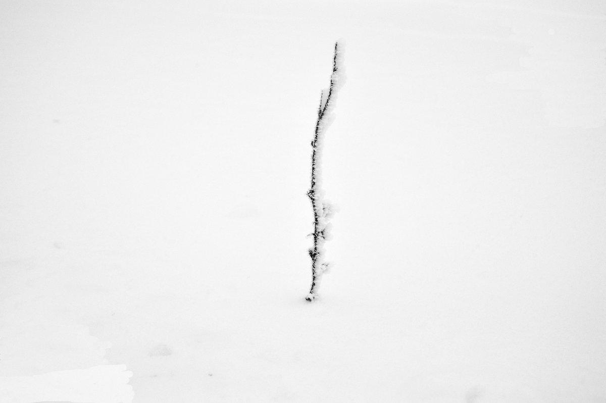 Зимний Минимализм - Кристина Девяткина