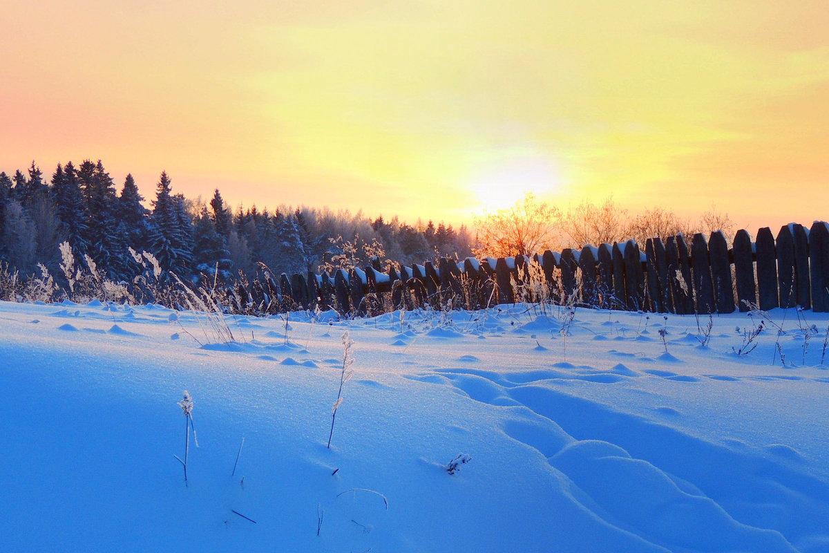 Просто наступила зима - Павлова Татьяна Павлова