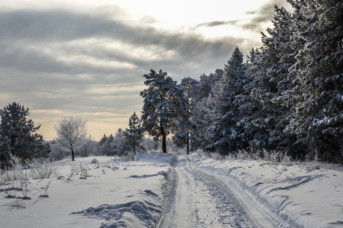 Зимний дес - Дмитрий Денисов