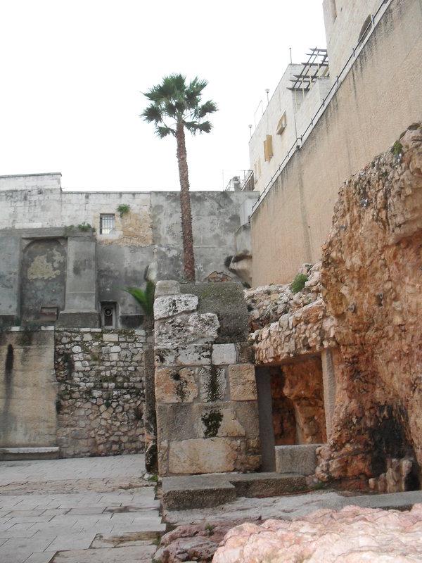 Бегом по Старому городу - Надежда