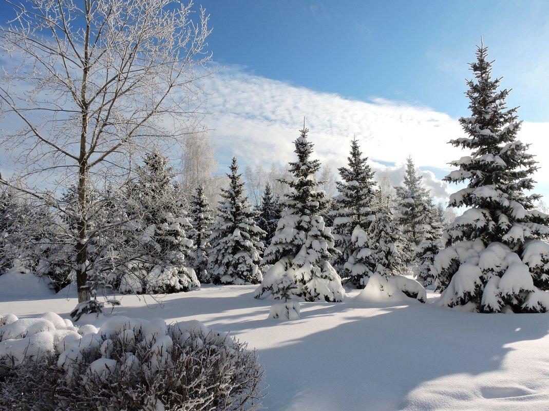 Мороз и солнце - день чудесный! - Ната Волга