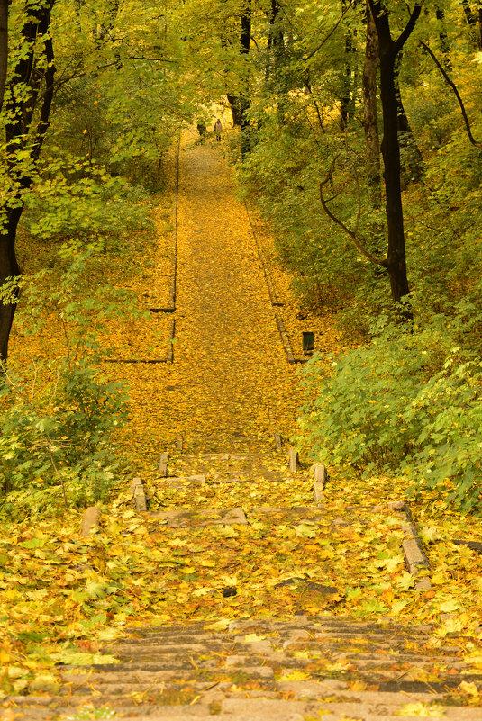 Осень в Киеве. - Стас