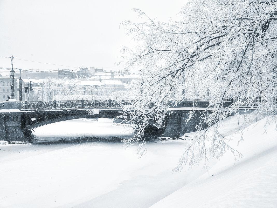 Снежный город - Елизавета Вавилова