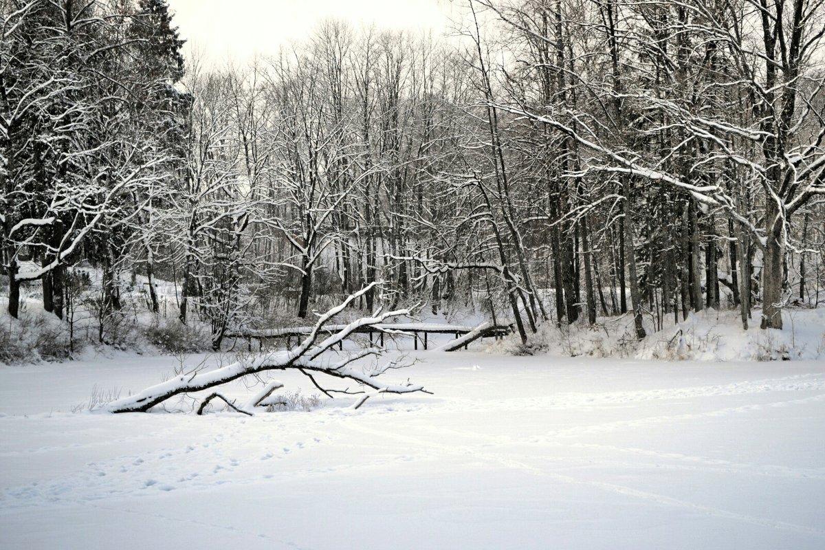 На замёрзшем озере - Милешкин Владимир Алексеевич