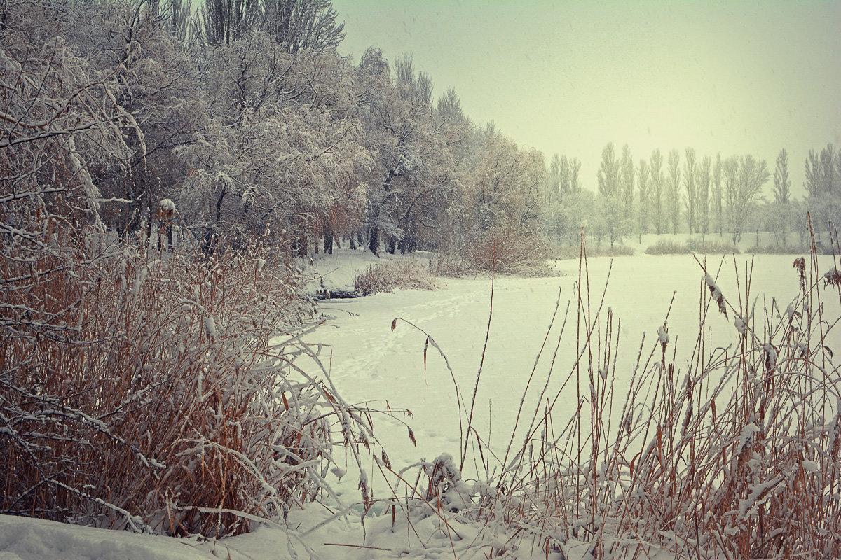 Зимняя - Yulia Demina