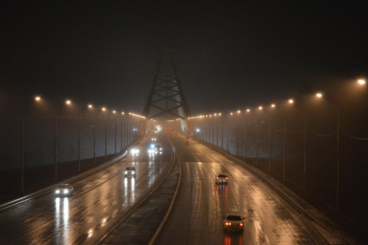 Дождь - Евгения Латунская