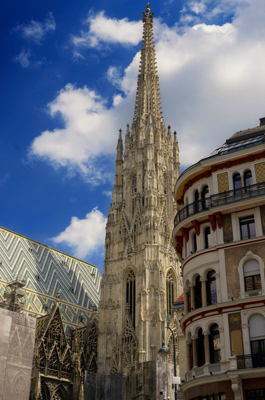 Вена. Католический Собор Святого Стефана #2 - Олег Неугодников