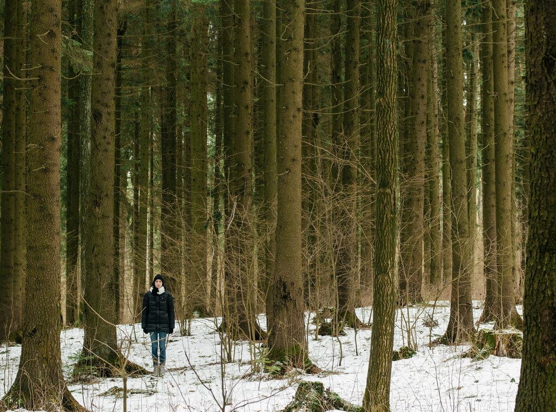 В лесу - Николай Н