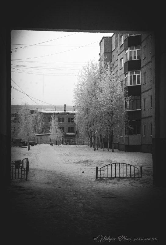 двор - юрий мотырев